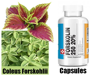 pure-natural-forskolin