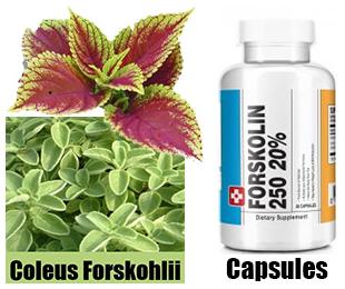 pure-natural-forskolin